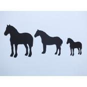 Misturas Cavalos