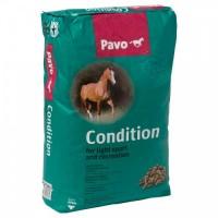 PAVO RAÇAO CAVALOS CONDIT