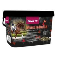 PAVO MUSCLEBUILD 3KG - RA